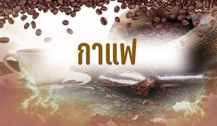 กาแฟ ประโยชน์ของกาแฟที่ไม่ใส่น้ำตาลมีอะไรบ้างและช่วยอะไรได้