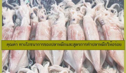 คุณค่า ทางโภชนาการของปลาหมึกและสูตรการทำปลาหมึกให้อร่อย