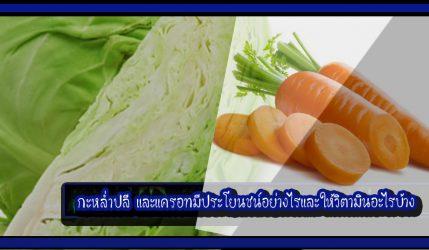 กะหล่ำปลี และแครอทมีประโยนชน์อย่างไรและให้วิตามินอะไรบ้าง