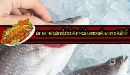 ปลา และการกินปลาครึ่งตัวต่อสัปดาห์จะช่วยลดความเสี่ยงของการเสียชีวิตได้
